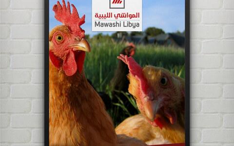 mawashi-libya (16)