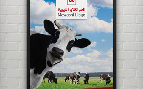 mawashi-libya (17)